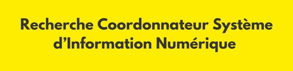 Recrutement : nous recherchons un(e) Coordonnateur Système d'Information Numérique (2 postes disponibles)